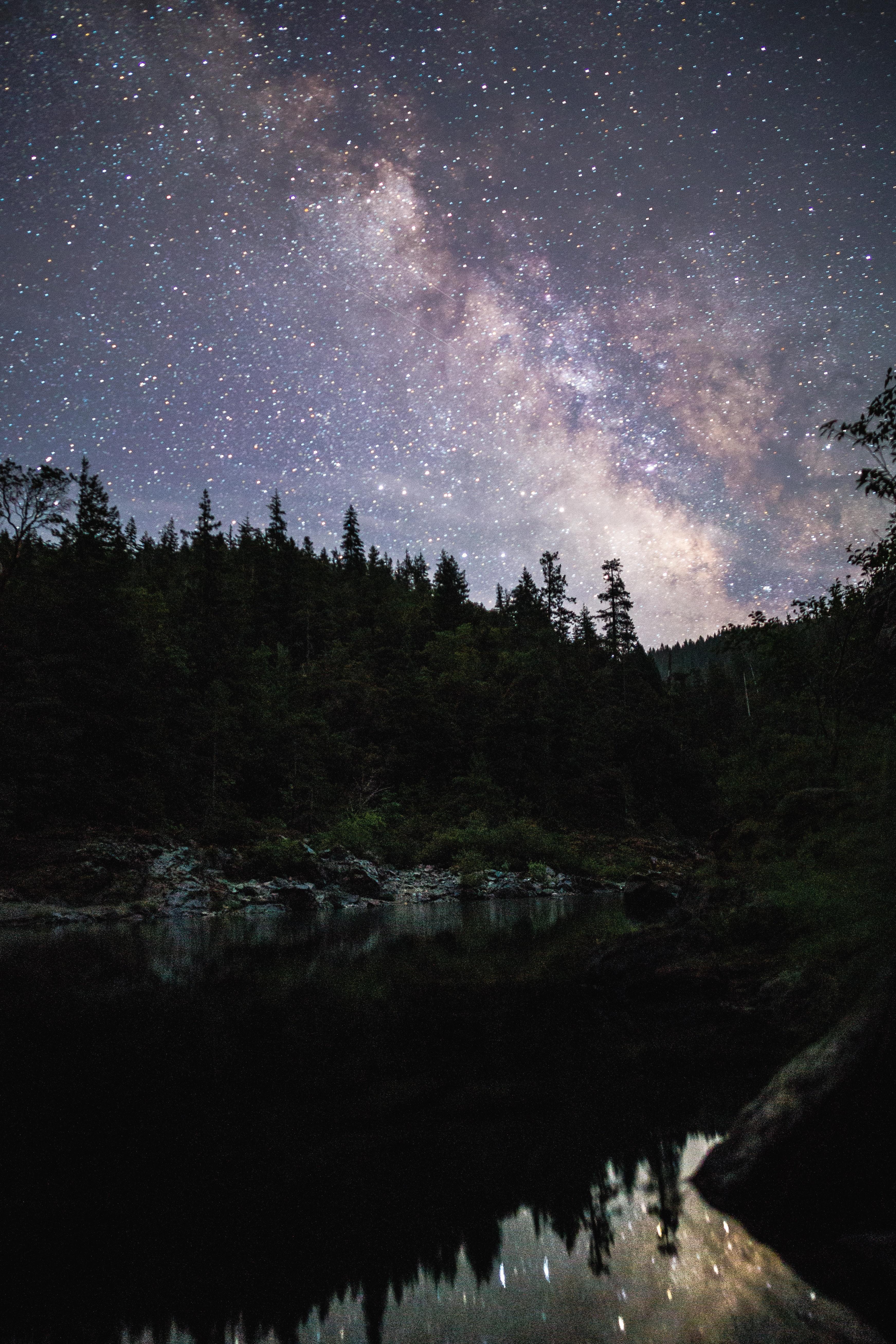 starry sky night 183 free stock photo