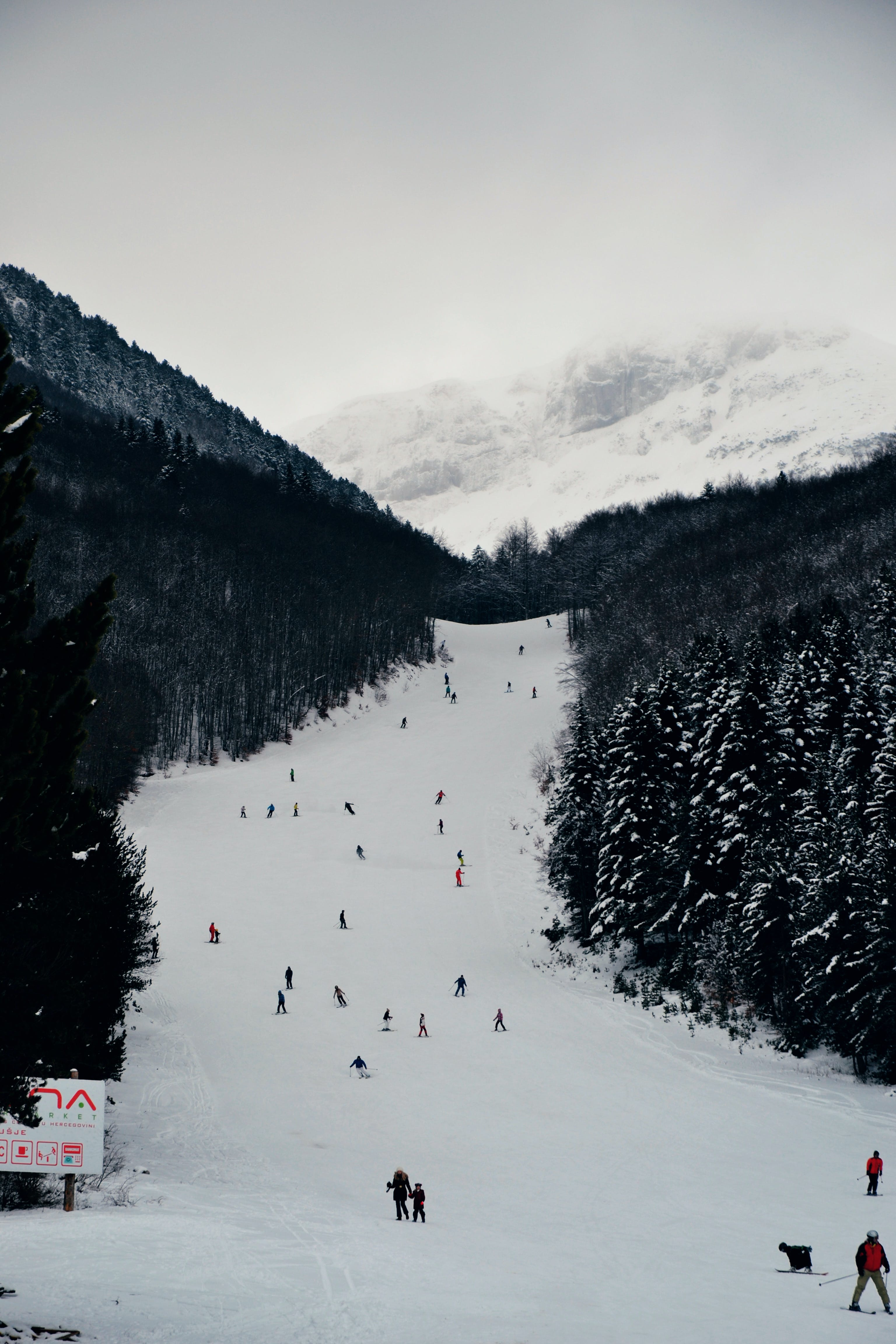 Snowboard and Ski Lanscape