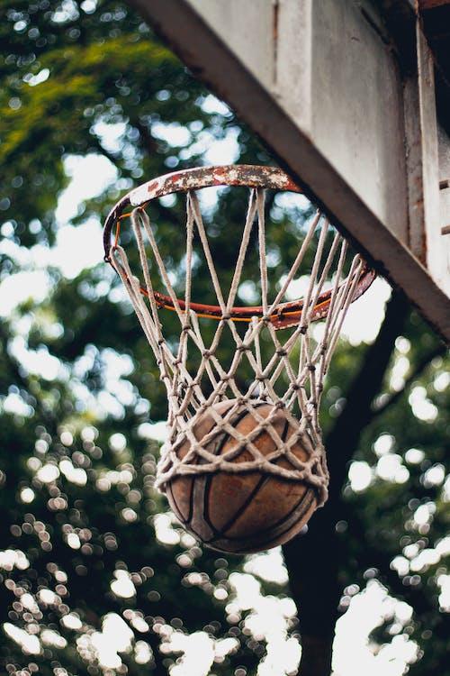 Brown and Black Basketball Hoop