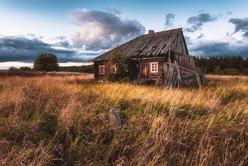 Immagine gratuita di abbandonato, campagna, campo d'erba
