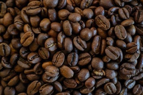 コーヒー, コーヒー豆, 褐色, 豆の無料の写真素材