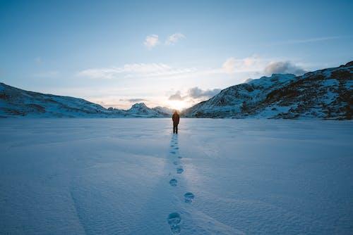 Foto d'estoc gratuïta de a l'aire lliure, constipat, exterior, fred