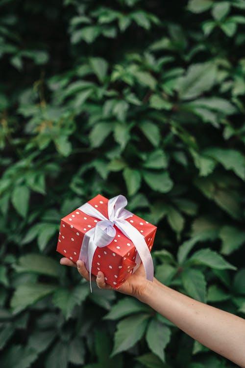 Ingyenes stockfotó ajándék, ajándékdoboz, bemutat témában