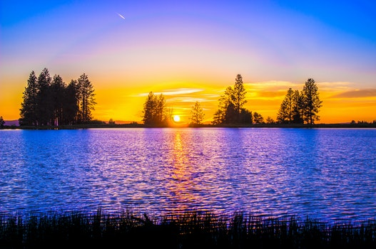 Blue and Orange Sunset over Lake With Tree Silhouettes