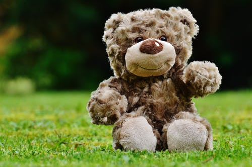 Fotos de stock gratuitas de animal de peluche, césped, juguete, mono