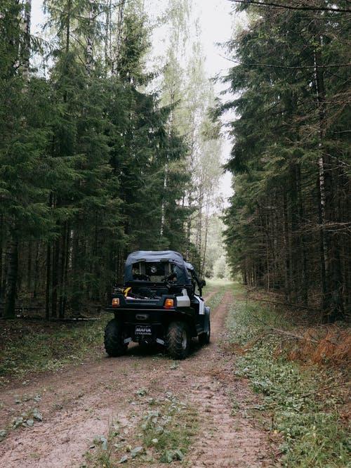 A Vehicle Passing on an Unpaved Pathway in the Forest