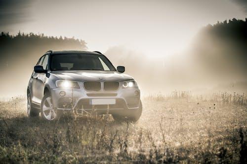Základová fotografie zdarma na téma auto, automobil, mlha, SUV