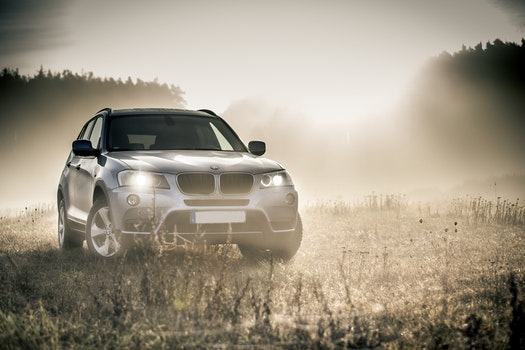 Kostenloses Stock Foto zu nebel, auto, fahrzeug, gras