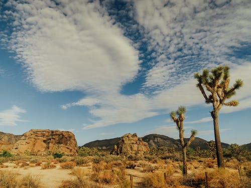 Brown Rock Formation Under Blue Sky and White Clouds
