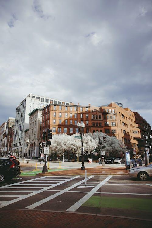 Fotos de stock gratuitas de al aire libre, calle, carril peatonal