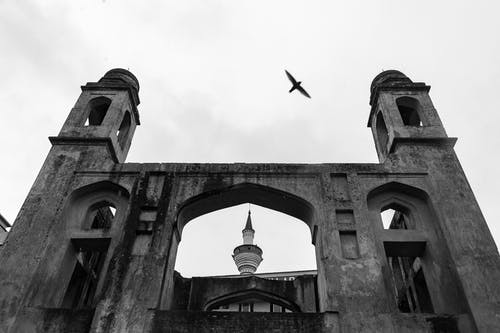 Grayscale Photo of Flying Bird over a Concrete Building