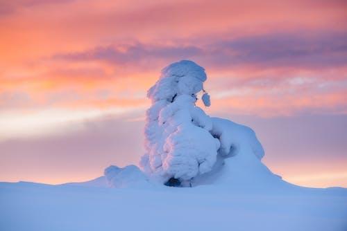 Fotobanka sbezplatnými fotkami na tému exteriéry, mraky, oblaky
