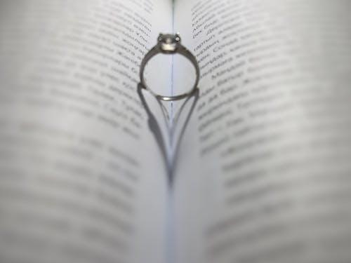 Foto d'estoc gratuïta de almaty, anell, esten erbol
