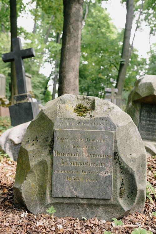 Gratis arkivbilde med begravelse, blad, eldgammel