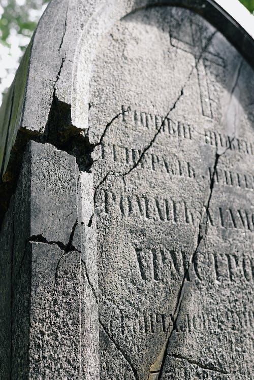 Fotobanka sbezplatnými fotkami na tému betónový odliatok, čierny abiely, cintorín