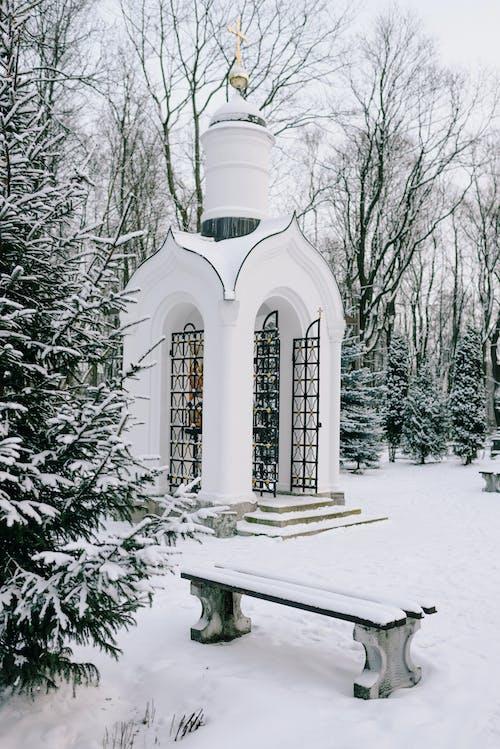 Fotobanka sbezplatnými fotkami na tému architektúra, chladný, cintorín