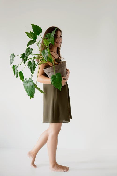 A Woman Holding a Potted Plant with Green Leaves
