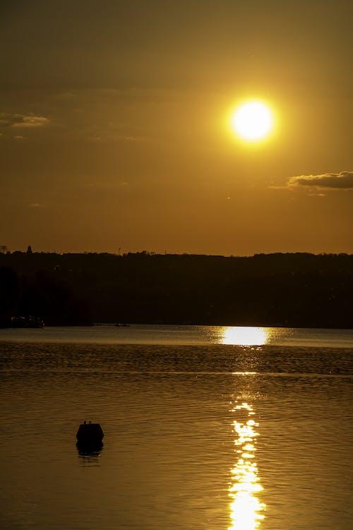 Gratis arkivbilde med gylden time, gyllen sol, klar himmel, kveldssol