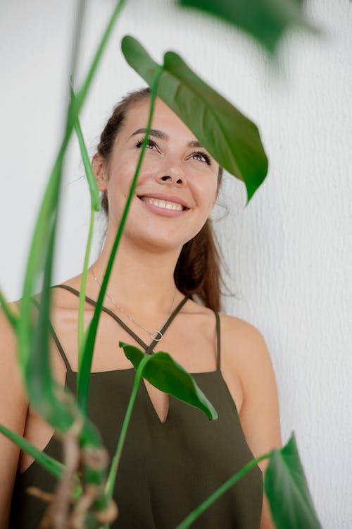 Beyaz arka plan, bitki, dikey atış içeren Ücretsiz stok fotoğraf