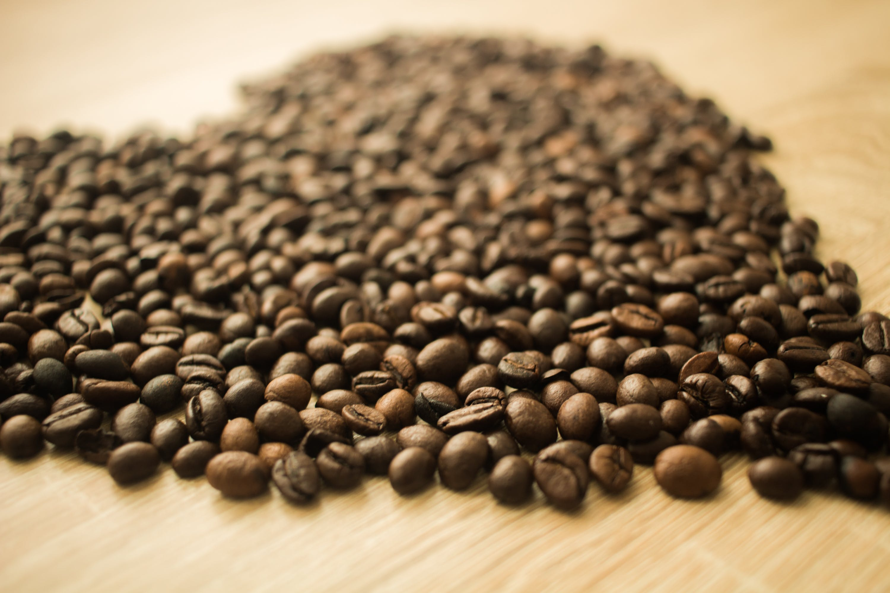 Coffee Beans in a Camera Focus Phoot