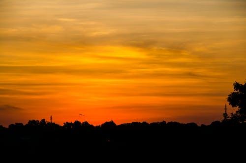 Foto profissional grátis de alvorecer, céu, nascer do sol, pôr do sol