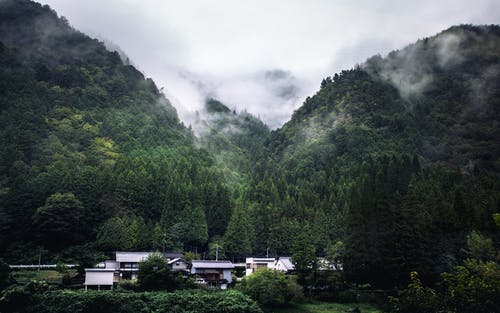 White and Black House Surrounded by Green Trees Under White Clouds