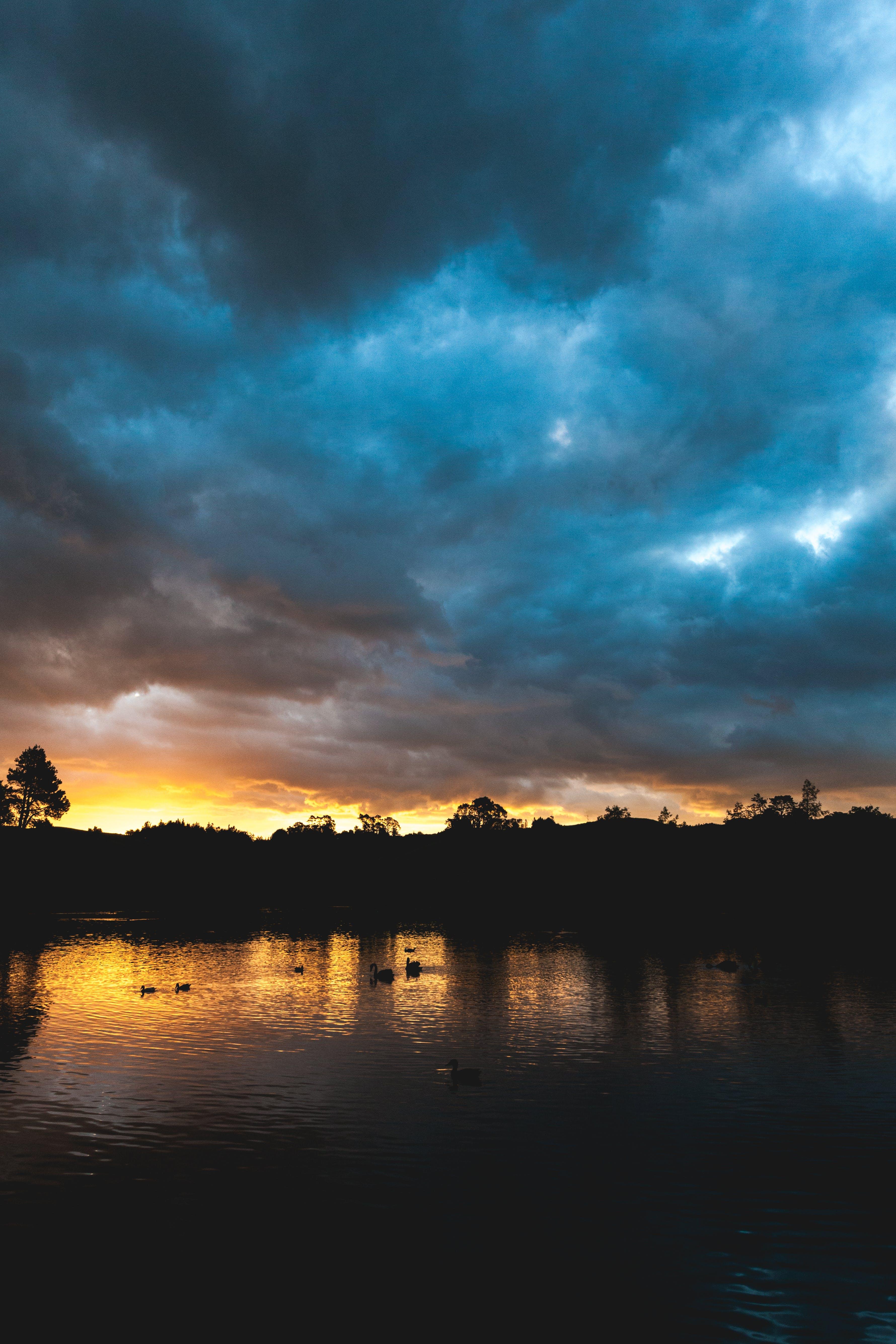 Fotos de stock gratuitas de agua, cielo, naturaleza, nubes