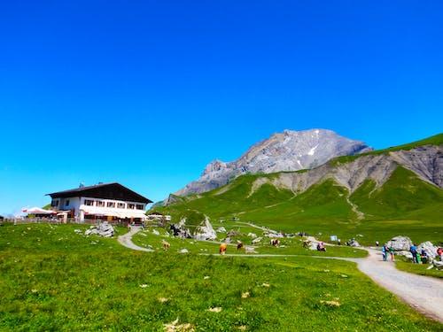 Free stock photo of adelboden, adventure, alps