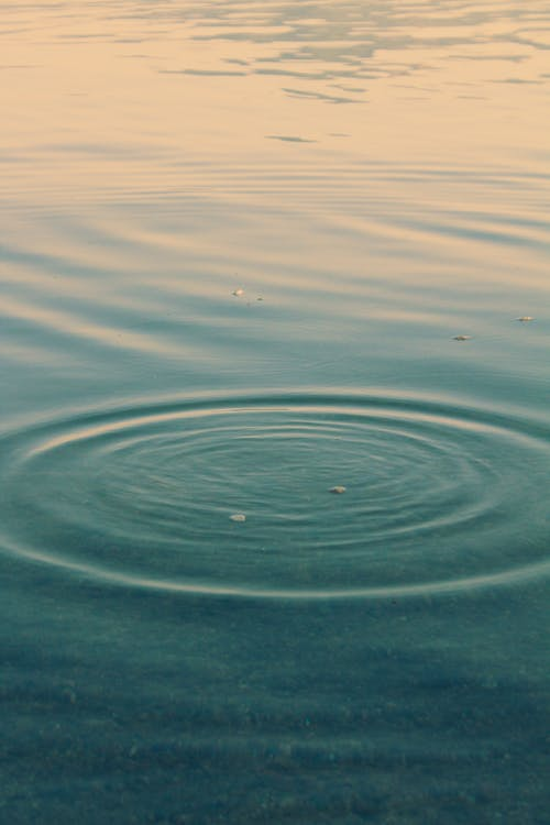 Close-Up Shot of a Water Surface