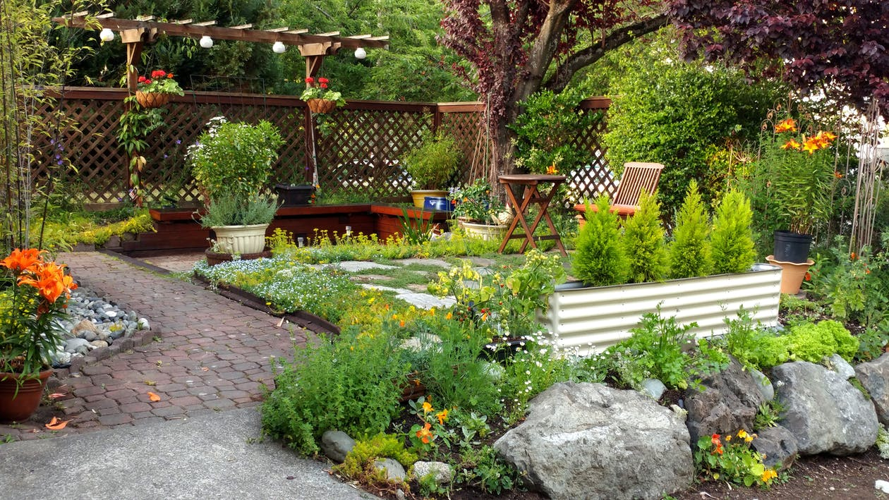 Free stock photo of city gardens, Frontyard, garden