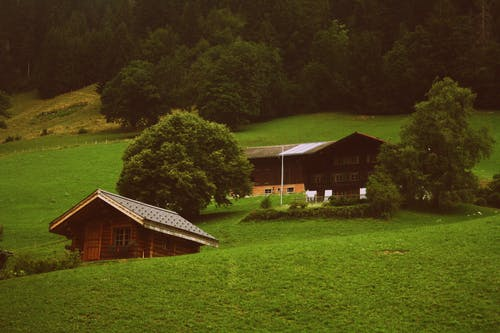 Two Brown Wooden Cabins in Green Grass Field