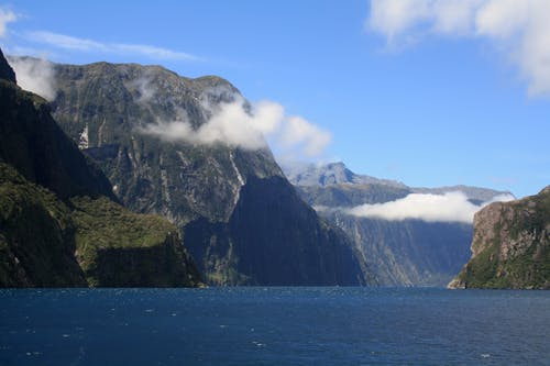 Free stock photo of beautiful, fjord, milford