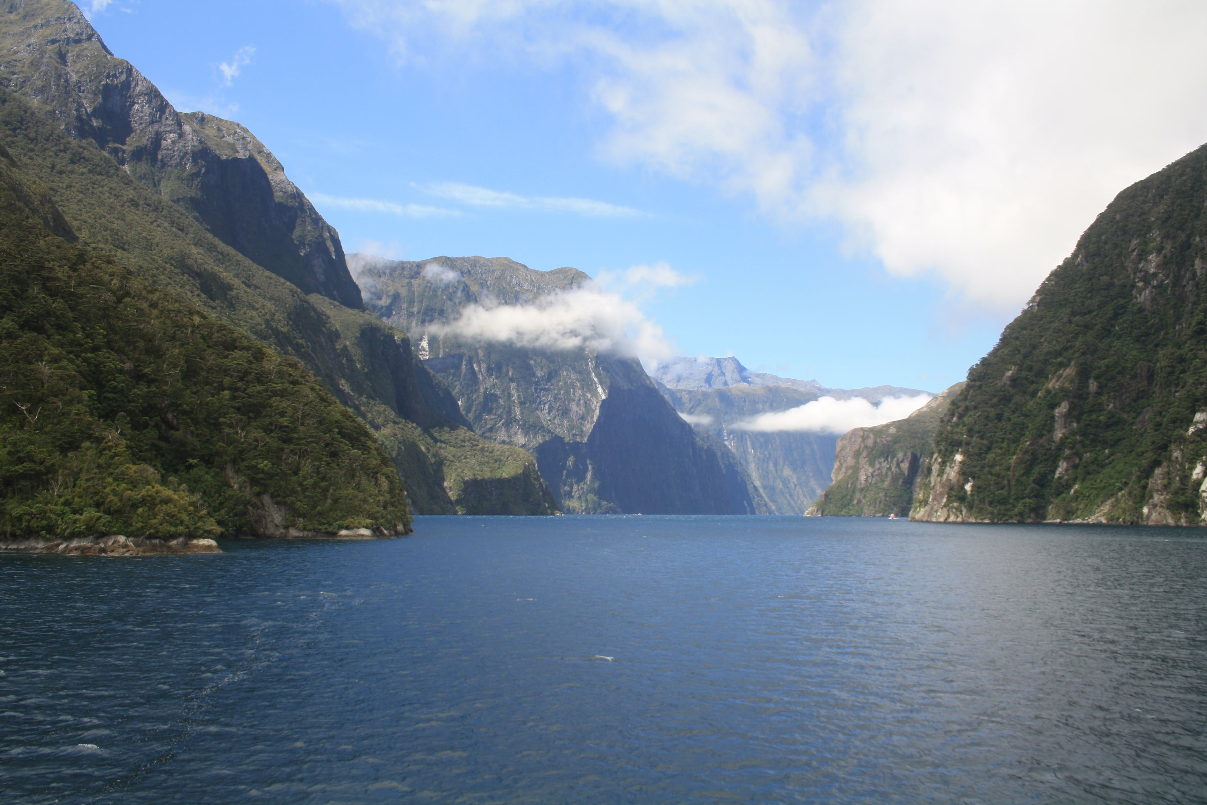 Free stock photo of beautiful, fjord, milford, milford sound