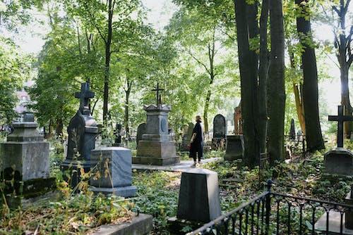 Fotobanka sbezplatnými fotkami na tému cestovať, cintorín, exteriéry