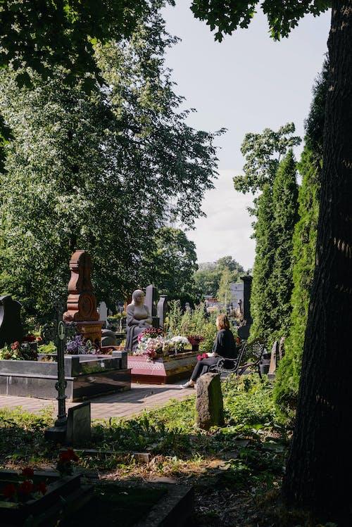Fotobanka sbezplatnými fotkami na tému cintorín, dom, domov