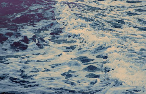 Free stock photo of Nicolas DeSarno, ocean, water