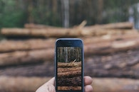 nature, hands, iphone