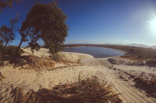 경치, 모래, 모래 언덕, 브라질의 무료 스톡 사진