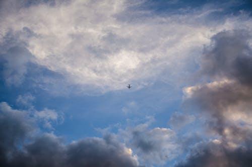 구름, 블루, 비행기, 하늘의 무료 스톡 사진