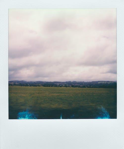 Immagine gratuita di polaroid