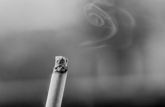 Free stock photo of black-and-white, cigarette, smoke, fume