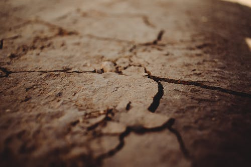 A Close-Up Shot of a Cracked Floor