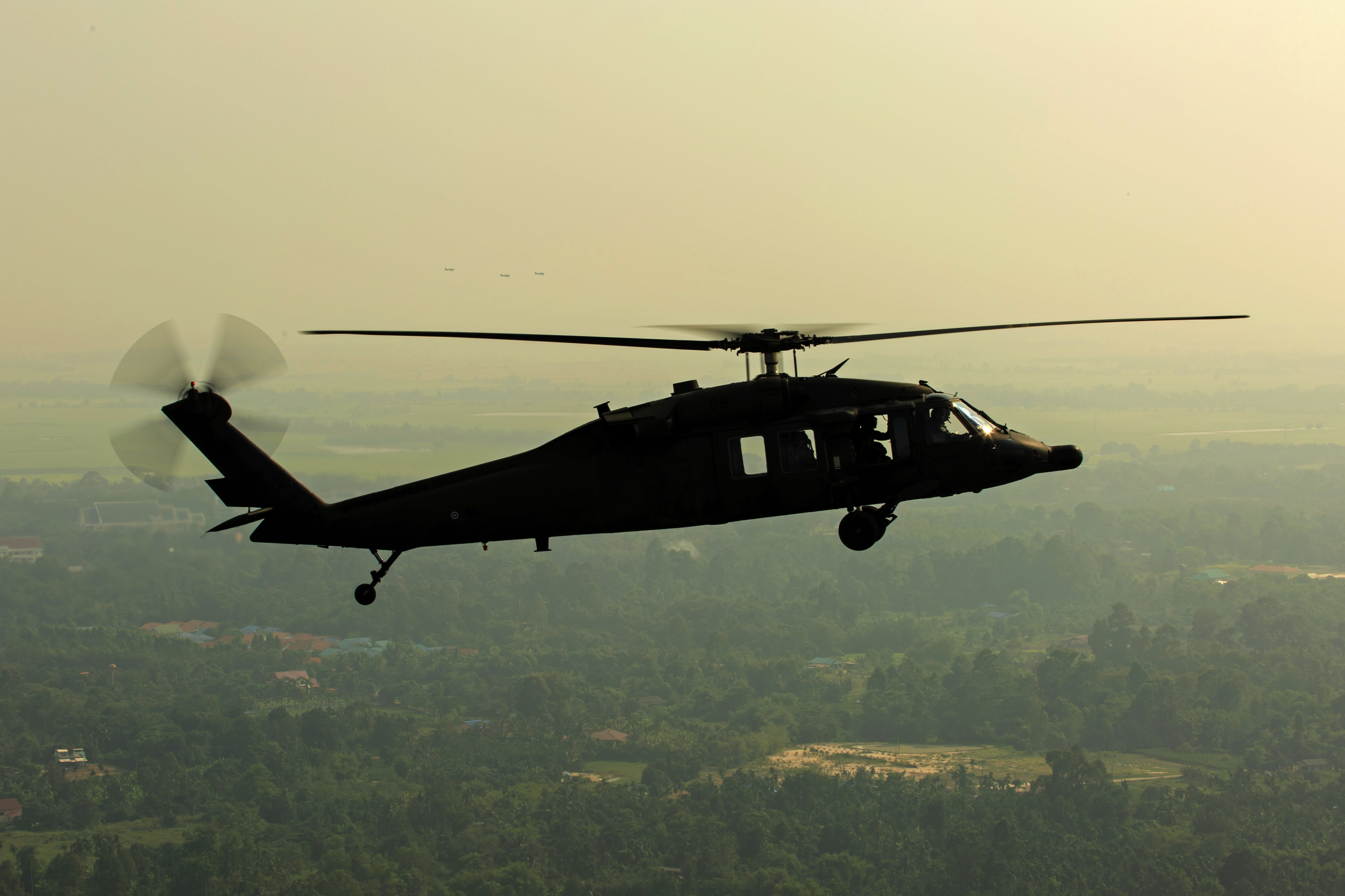 Green Leaved Trees Under Black Helicopter