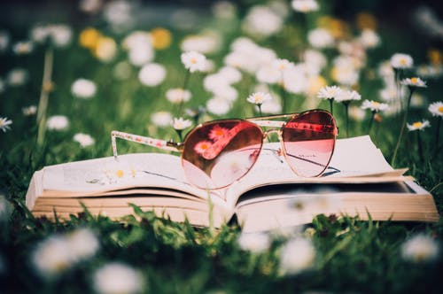 Photo of Red Sunglasses With Gold Frame on Book Surrounded by White Flowers