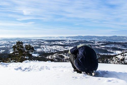 Безкоштовне стокове фото на тему «іній, високий, Денне світло, замерзання»