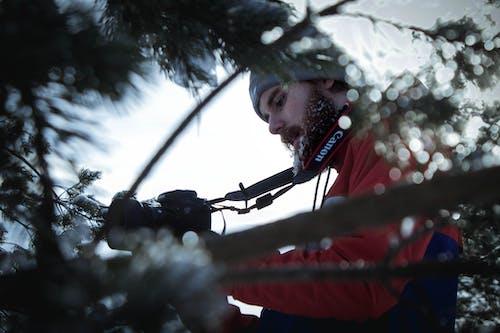 Imagine de stoc gratuită din acțiune, adult, aparat de fotografiat, arbore