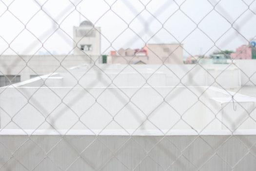 Free stock photo of whitespace, macro, minimalist, pastel