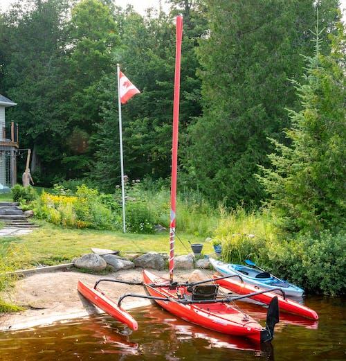 Free stock photo of red sailing, sail, sailing boat