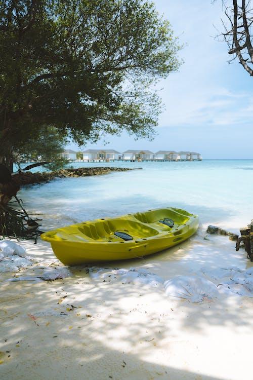 Green Kayak on Seashore