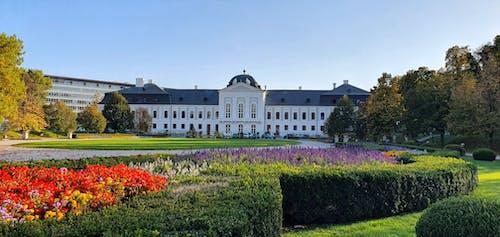 Ingyenes stockfotó grassalkovich palota témában